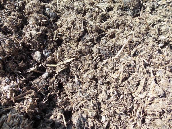 Spent Mushroom Compost600 x 450 jpeg 106kB